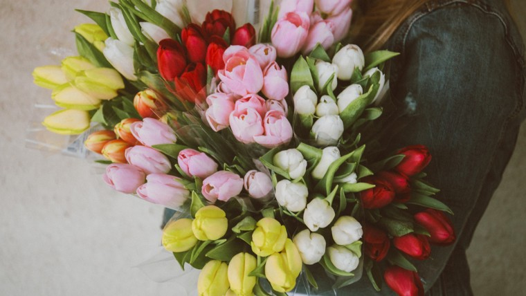 15 Beautiful Types of Tulips